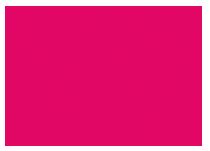 businesschicks-logo